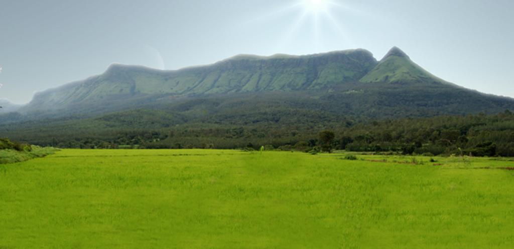 One of Hill Station, Chickmagalur