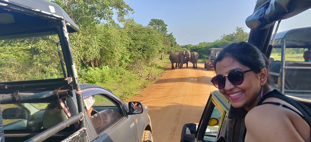 With the elephants of Srilanka