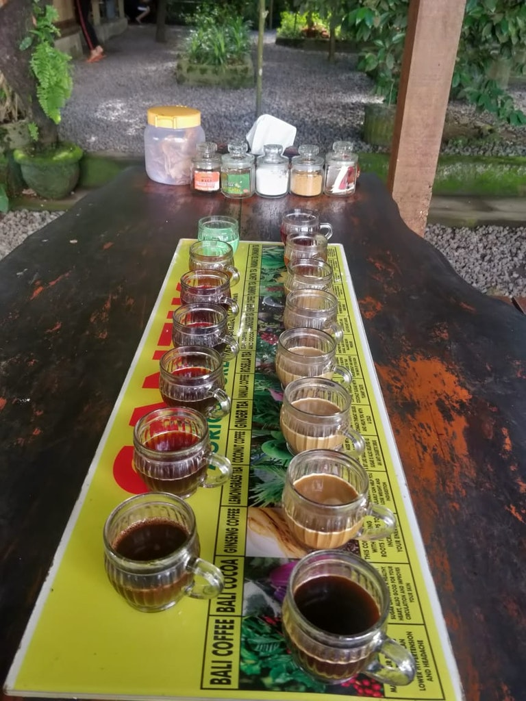 A picture of variety of coffee at Coffee garden in Bali