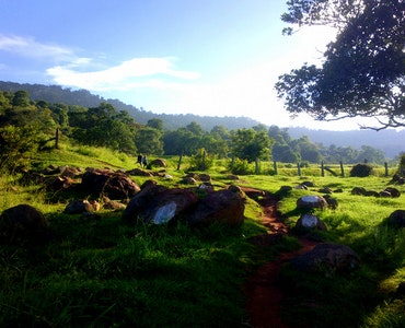 Landscape picture of yelagiri hillstation