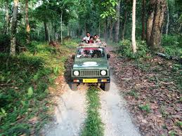 A picture of a group of people enjoying jeep safari