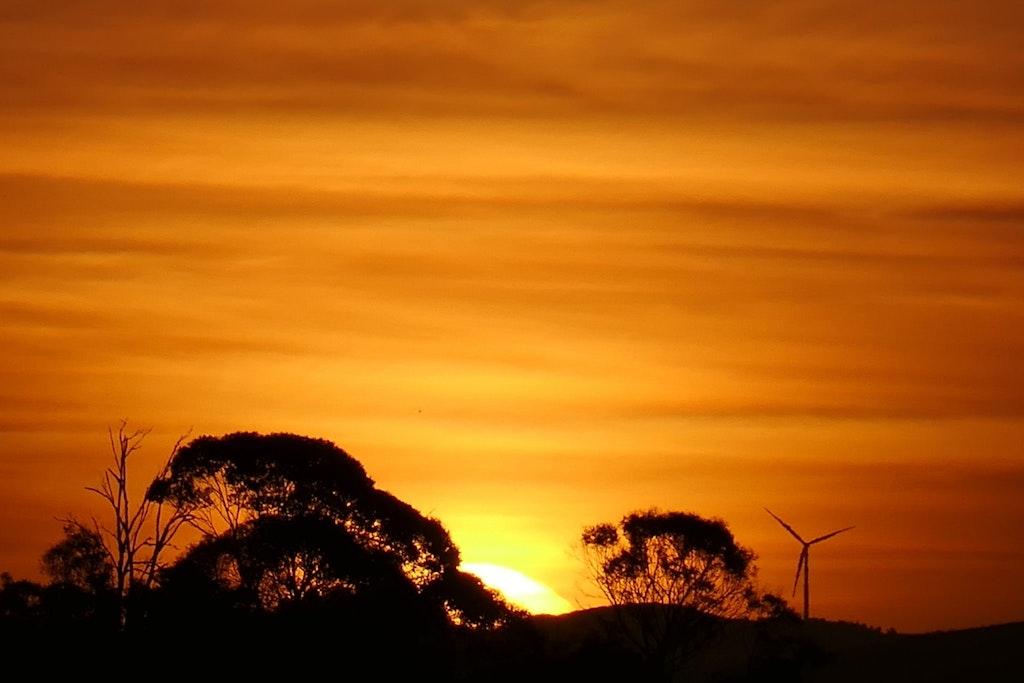 The Most Beautiful Spots in Hamilton, New Zealand