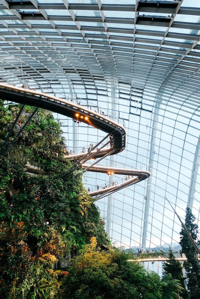 Indoor Rainforest Diversification.
