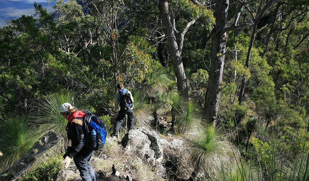 Scenic Rim Trail, Queensland, Australia