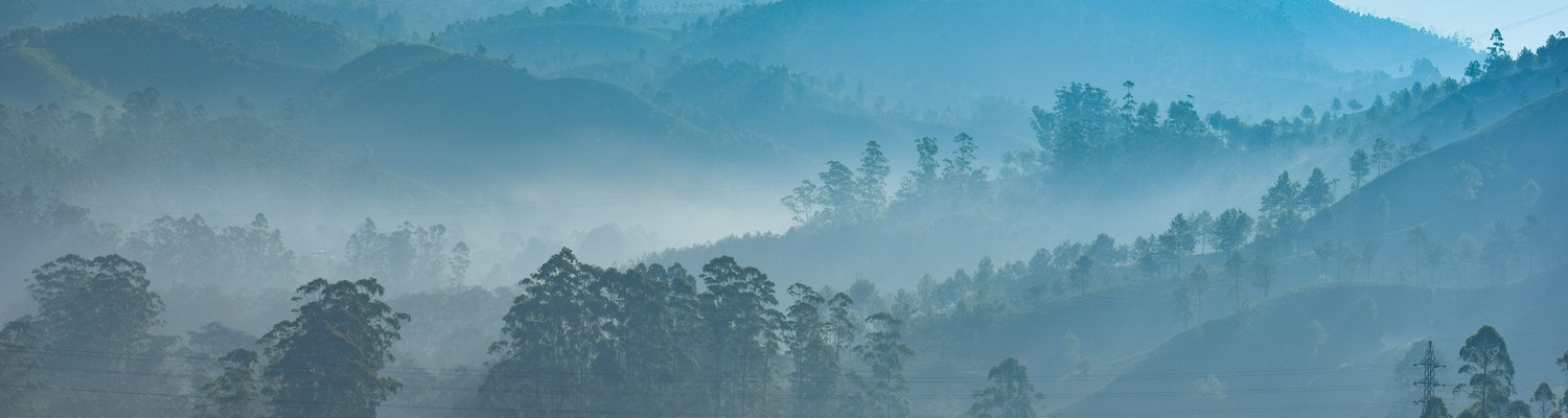 Misty hill view of Munnar