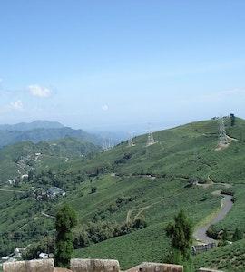 Lamahatta - The Eco tourism place