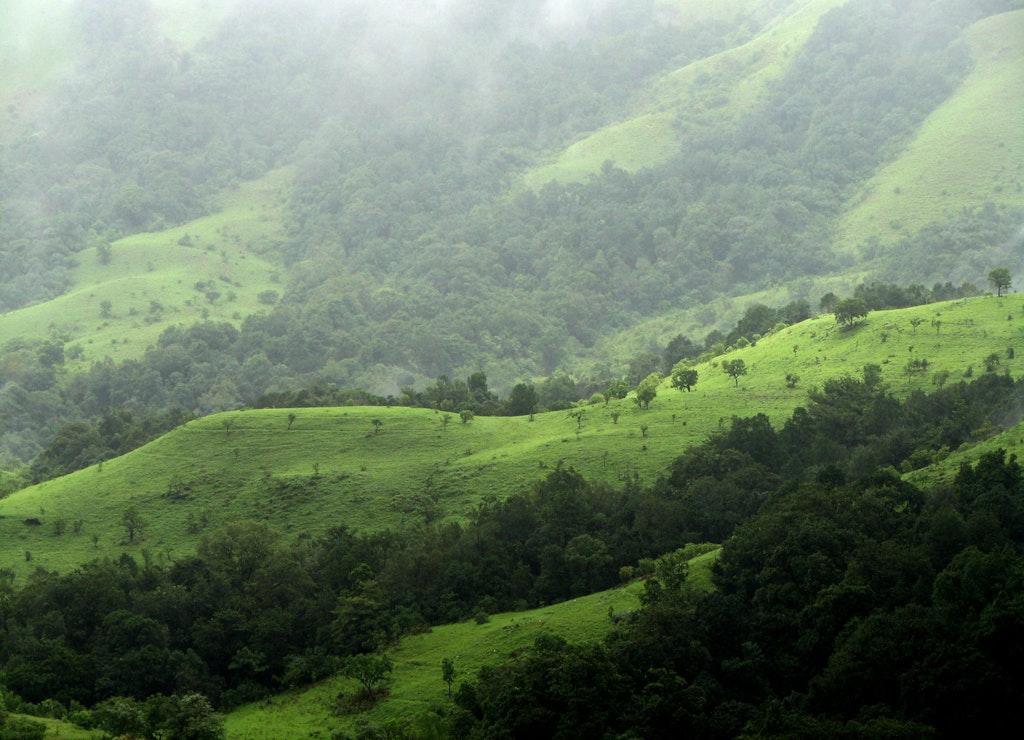 Kudremukh National Park, Chikmagalur