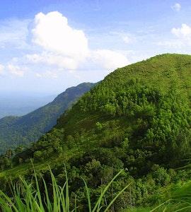 Trivandrum Ponmudi