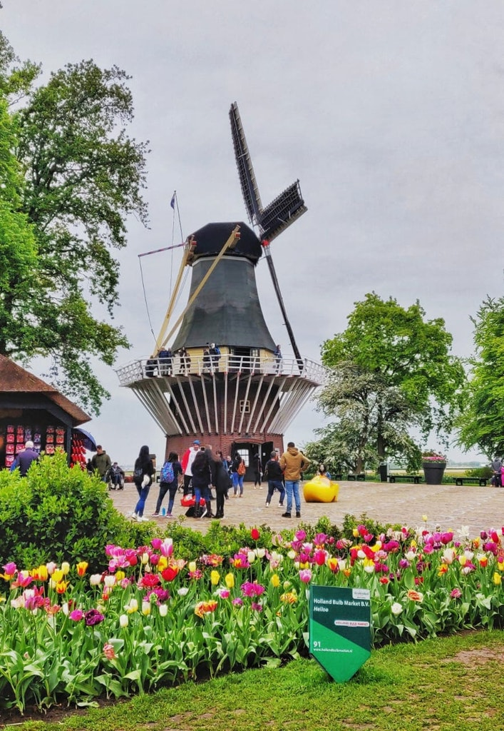 A picture that was taken in the Netherlands, on a happy vacation