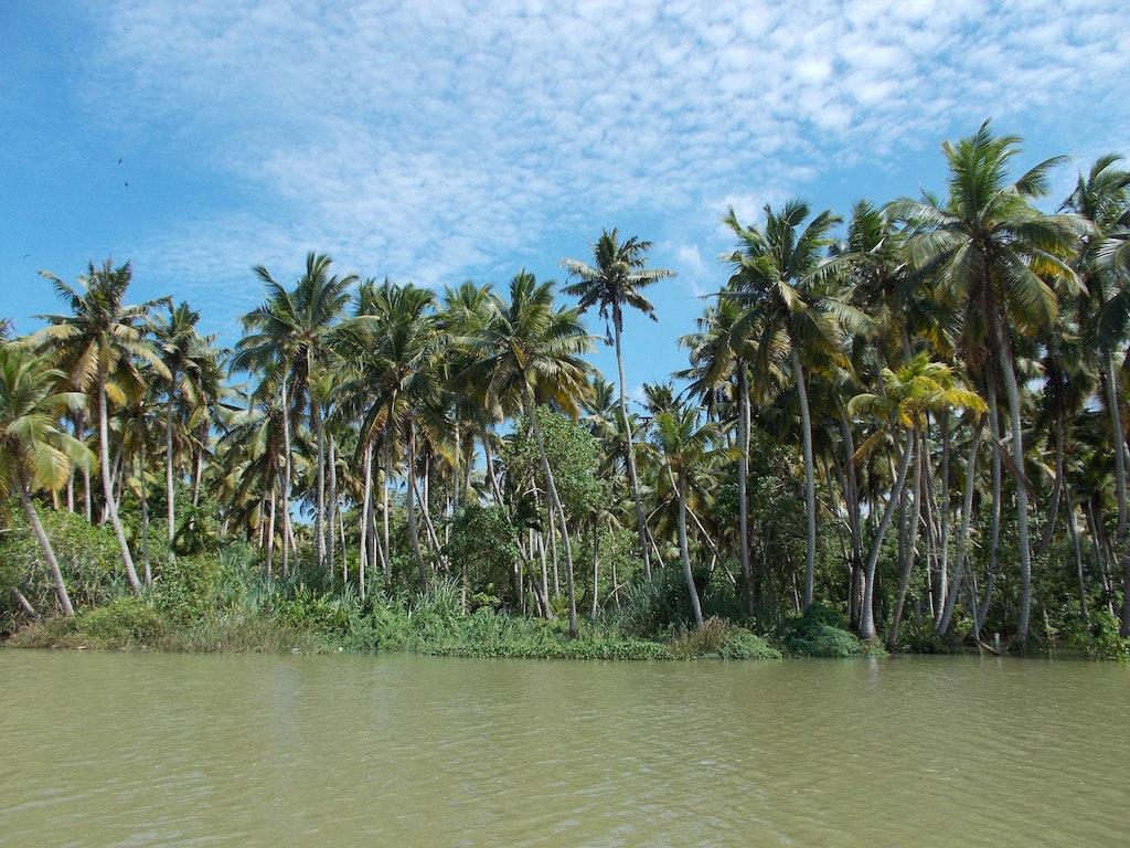 Backwaters Poovar Trivandrum