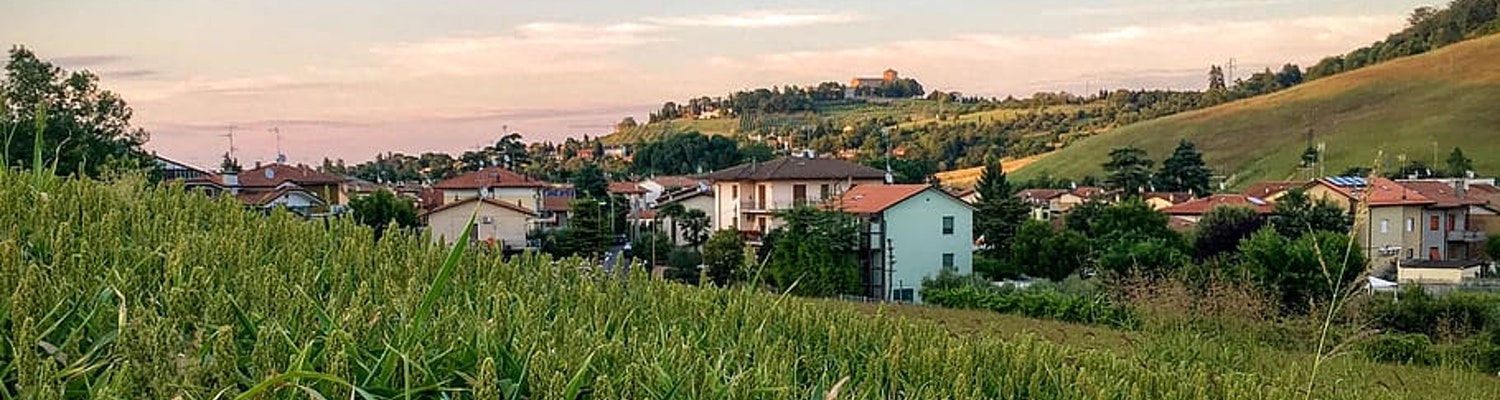 Cesena's fields and houses