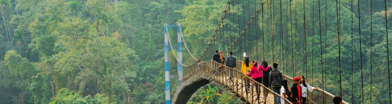 a bridge in meghalaya