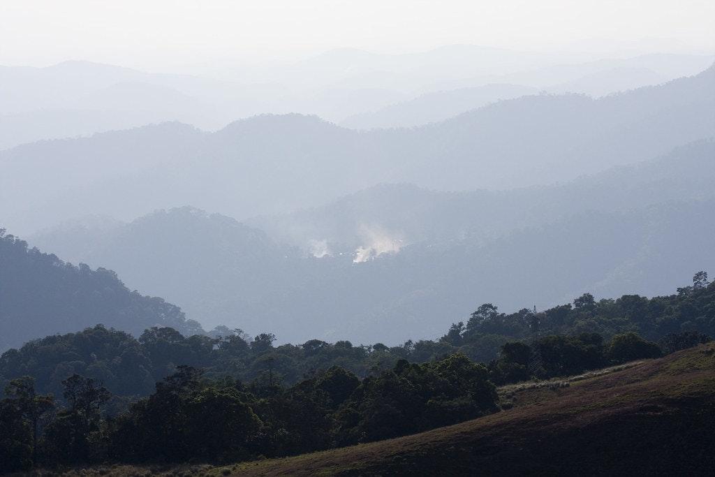 Mist clad hills