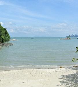 Penang Malaysia National Park