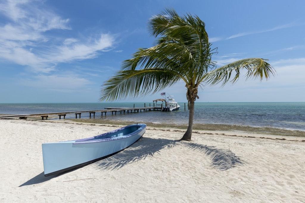 Boat under coconut tree