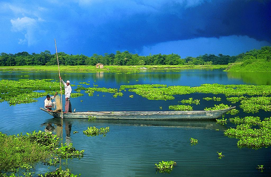 Majuli Island