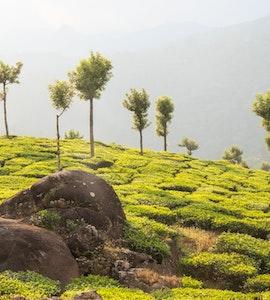 Rajamala Kerala