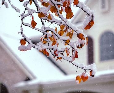 winter in phoenix
