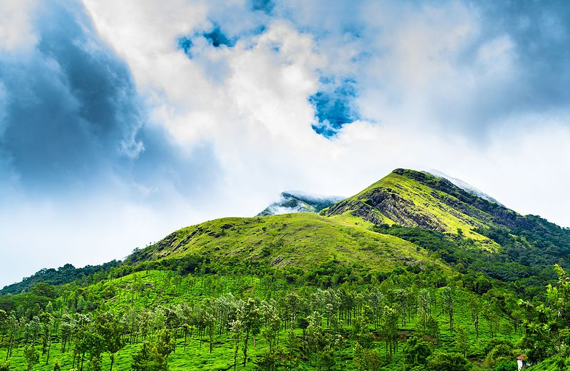 Chembra Peak Trekking in Kerala