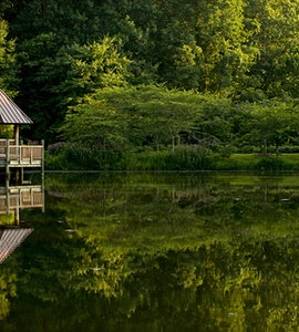 Parks in Virginia