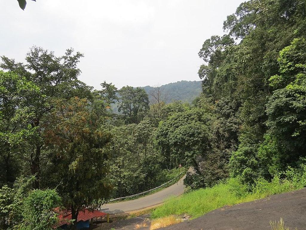 Virajpet road view