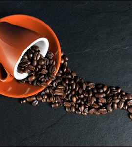 Best Independent Coffee Shops in USA