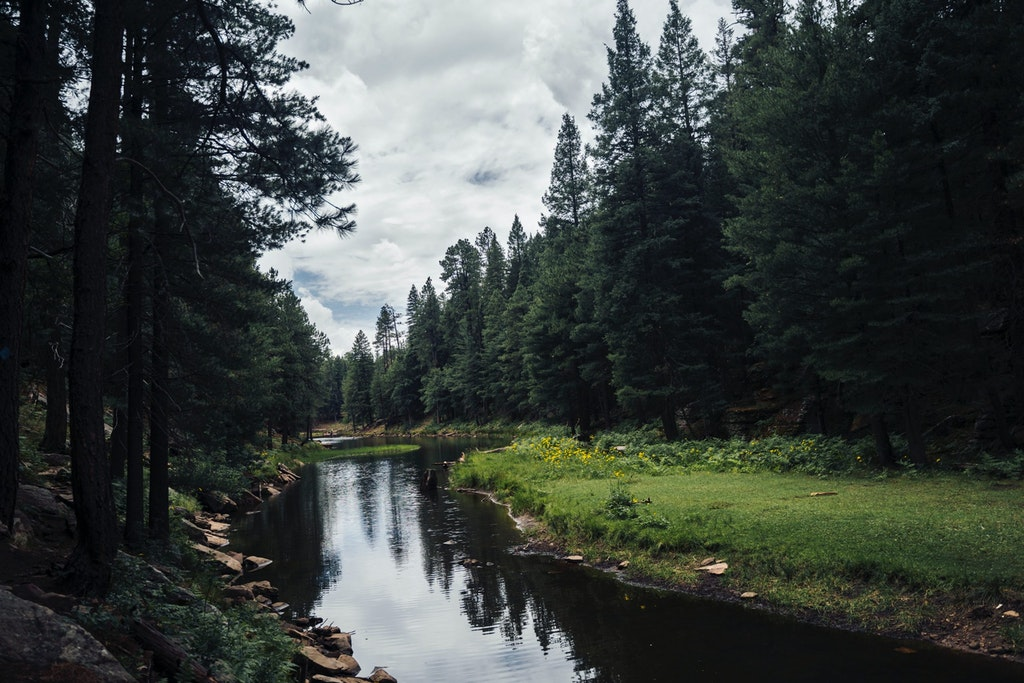 Things to Do in Payson