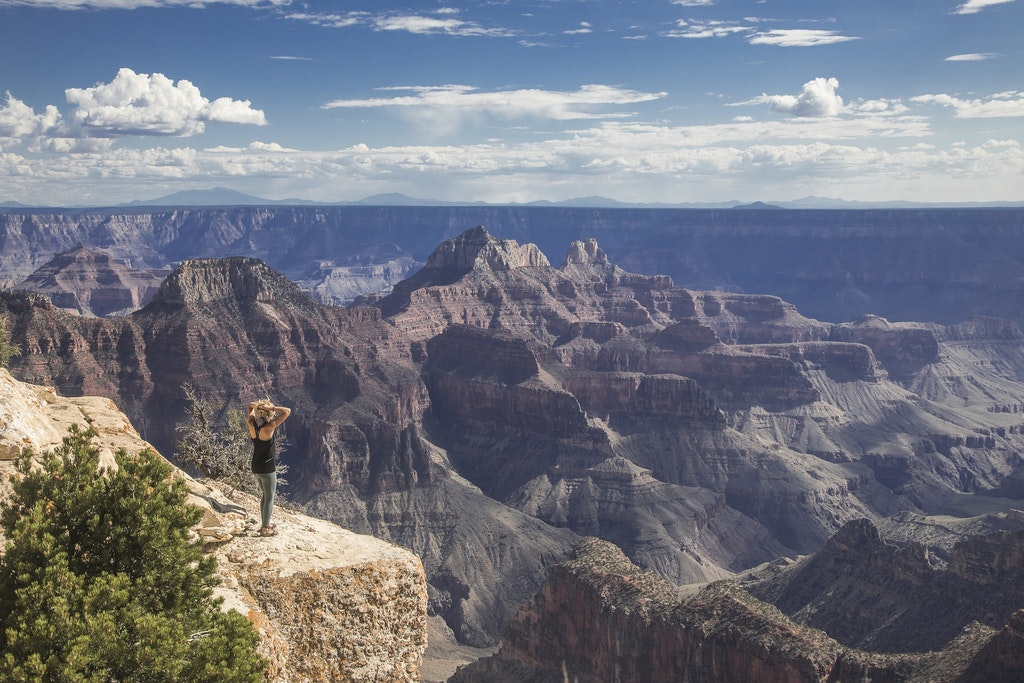 The beautiful view of the Grand Canyon.