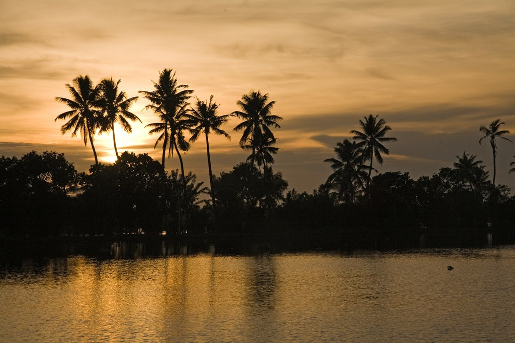 The beautiful sunset in the Backwaters of Kerala.