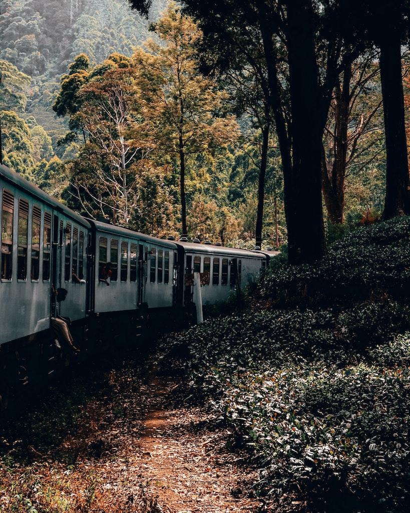 Train in Nuwara Eliya