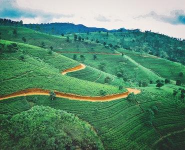 Sri Lanka in August