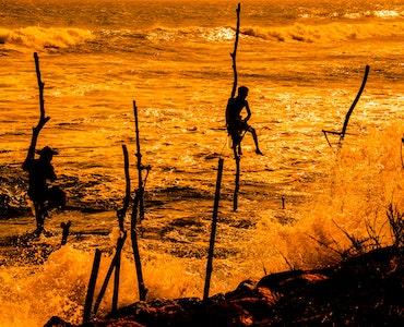 Top 10 Islands in Sri Lanka