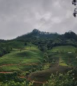 Best time to visit Sri Lanka