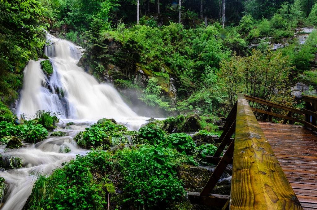 Selva Negra, Alemania, viajes de bienestar a Europa