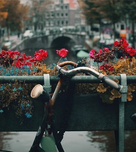 Day Trips from Amsterdam