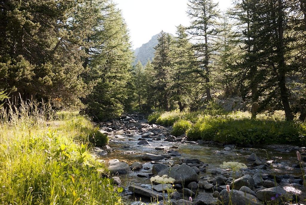 national-park-mercantour-france