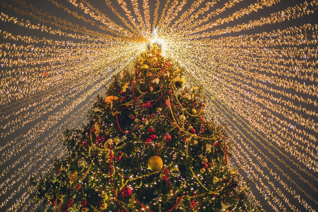 Decorating Christmas Trees, Events In Croatia In December