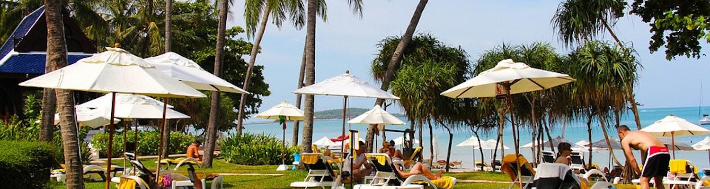 best restaurants in Koh Samui