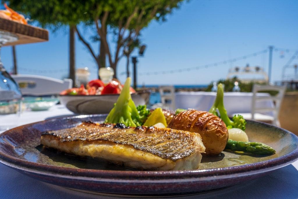 Sea Bass, Greek Cuisine